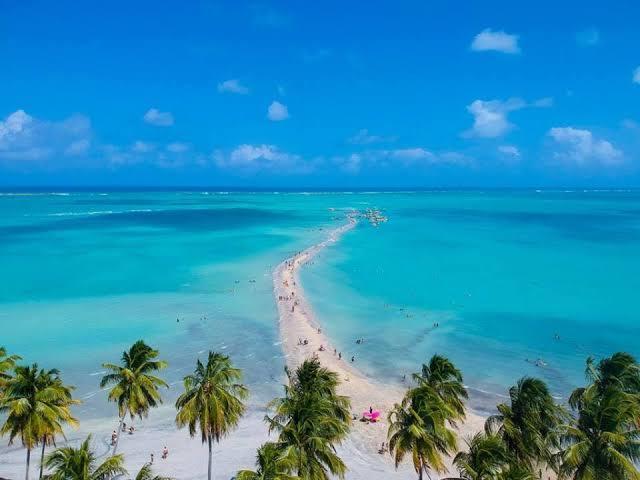 Hotéis, pousadas e Resorts em Maragogi, o caribe brasileiro