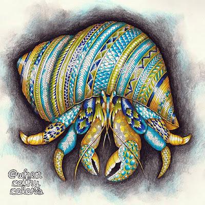 Kolorista Hermit Crab By Millie Marotta