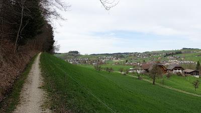"""Singletrail"" beim Fäilimoos nahe Rohrbach"