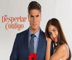 Despertar contigo Capítulo 85 - Televisa