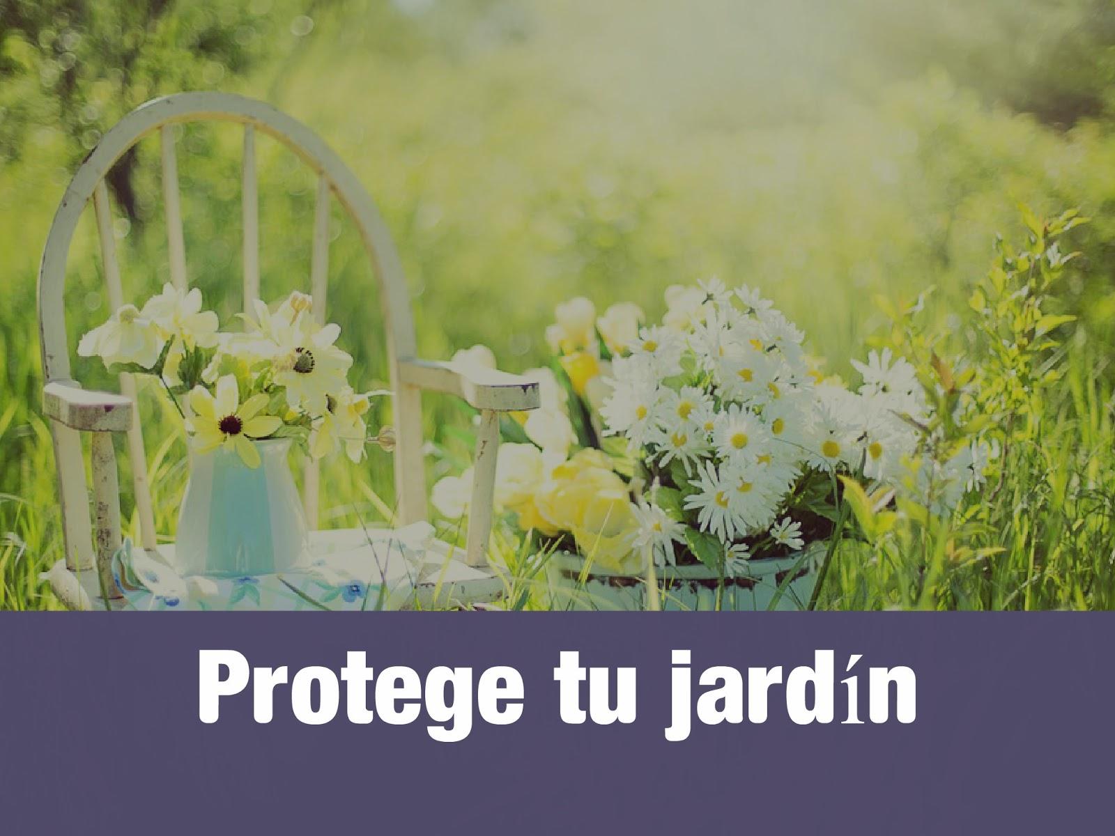 protege-tu-jardin-mosquitos