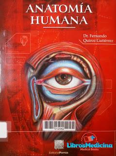 Anatomía Humana Quiroz
