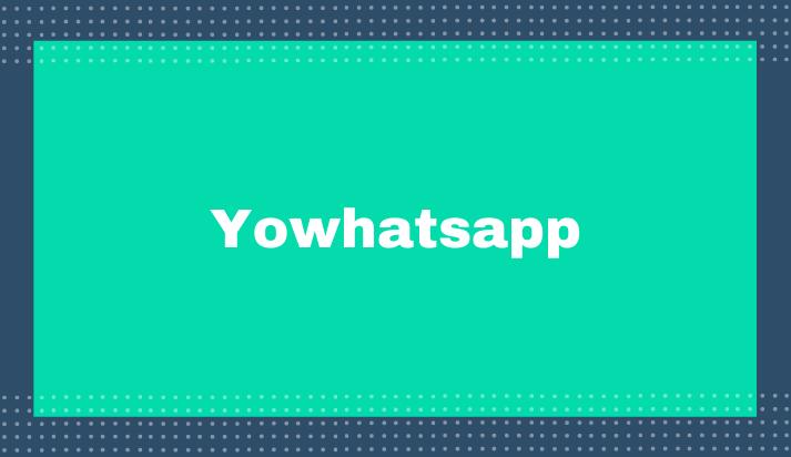 Update Yowhatsapp