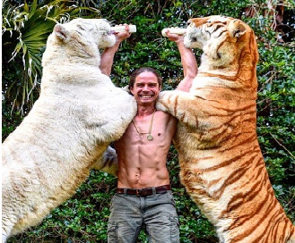 The 'forest man' play with tiger