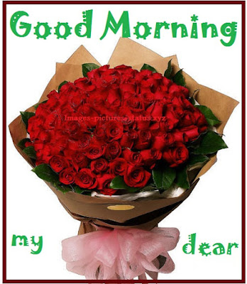 good morning wishes flowers photos, good morning flowers pictures, good morning flowers with messages, good morning rose images download, good morning flowers download, good morning images with flowers hd download, good morning flower images free download hd, amazing good morning images hd, good morning romantic rose