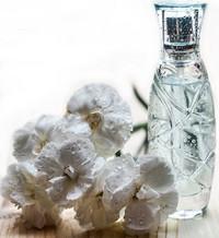 frascos-perfumes-colonias