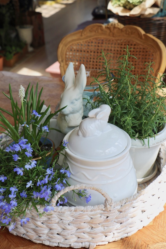 Three bunnies and three plants are part of a Spring Blue and White Basket Arrangement
