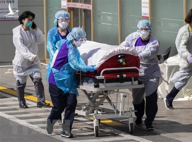Hơn 4.000 người chết, 114.000 người nhiễm Covid-19 trên toàn cầu