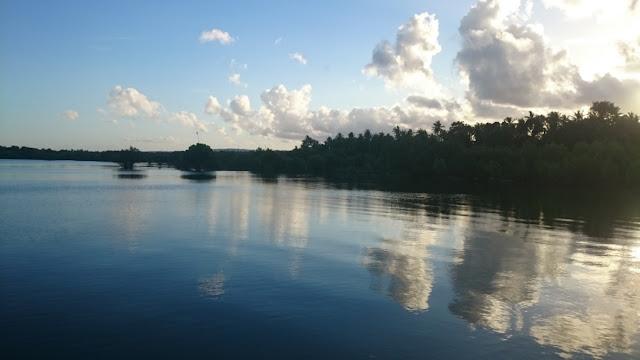 hutan-mangrove-mata-lalang-selayar
