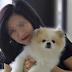Κορωνοϊός: Πέθανε ο σκύλος που βρέθηκε θετικός στον ιό