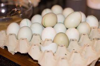 Toni's Babette-Ei mit grüner Schale