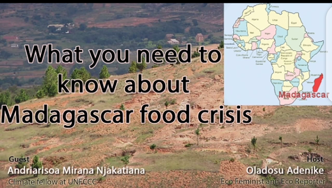 What you need to know about the Madagascar food crisis