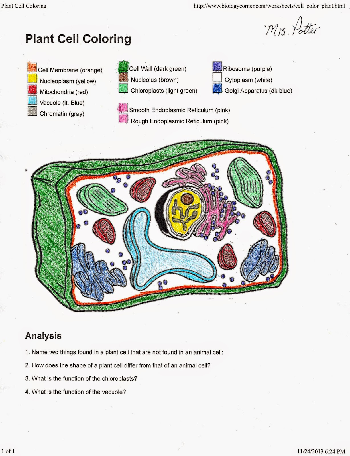 Animal Cell Answer Key Coloring Pages