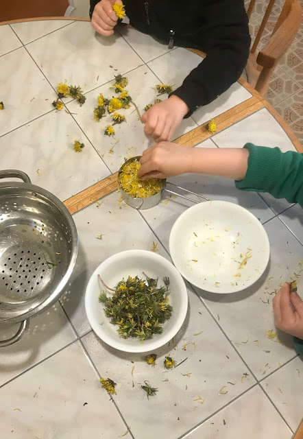 Kids at a table putting dandelion petals into bowls.
