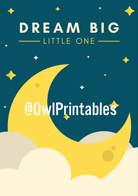 Moon and stars print that read 'dream big little one'