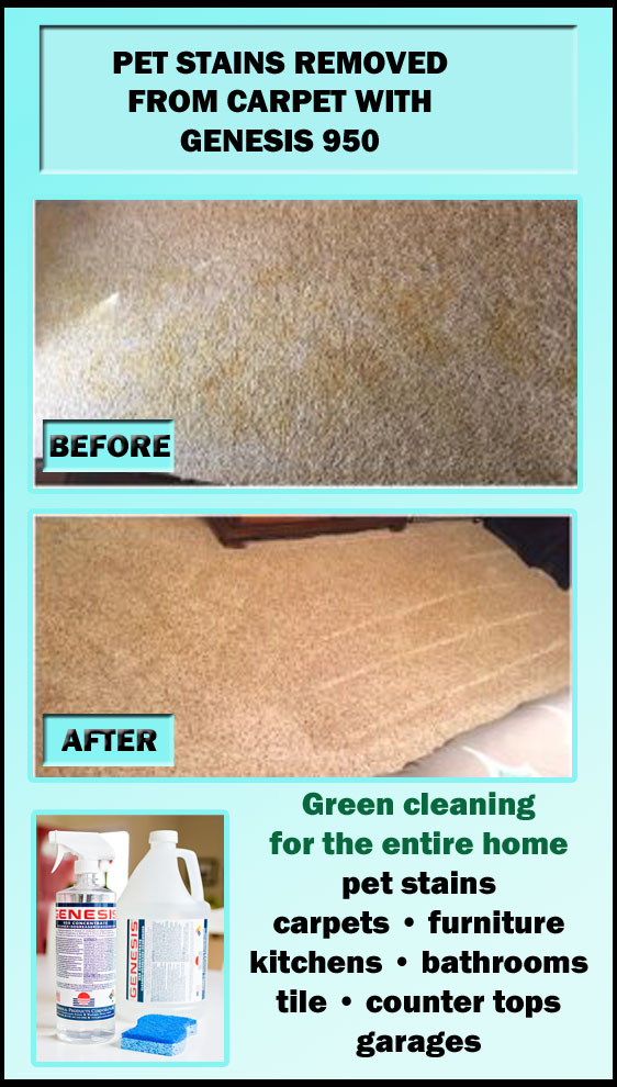Genesis 950 Cleaning Tips And Tricks: Remove Pet Stains ...