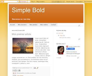 Simple Bold Theme