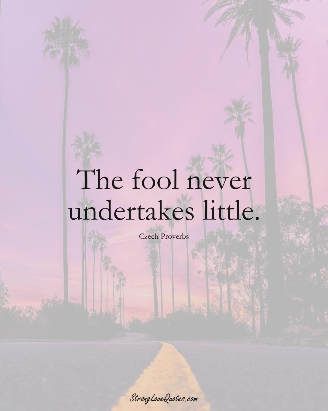 The fool never undertakes little. (Czech Sayings);  #EuropeanSayings