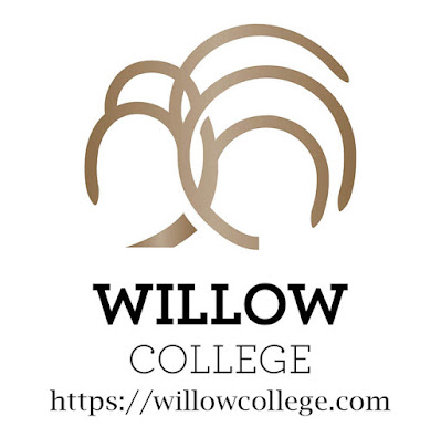 willowcollege.com