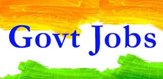 Govt Of India Job
