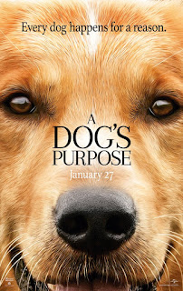 A Dog's Purpose ( 2017 )