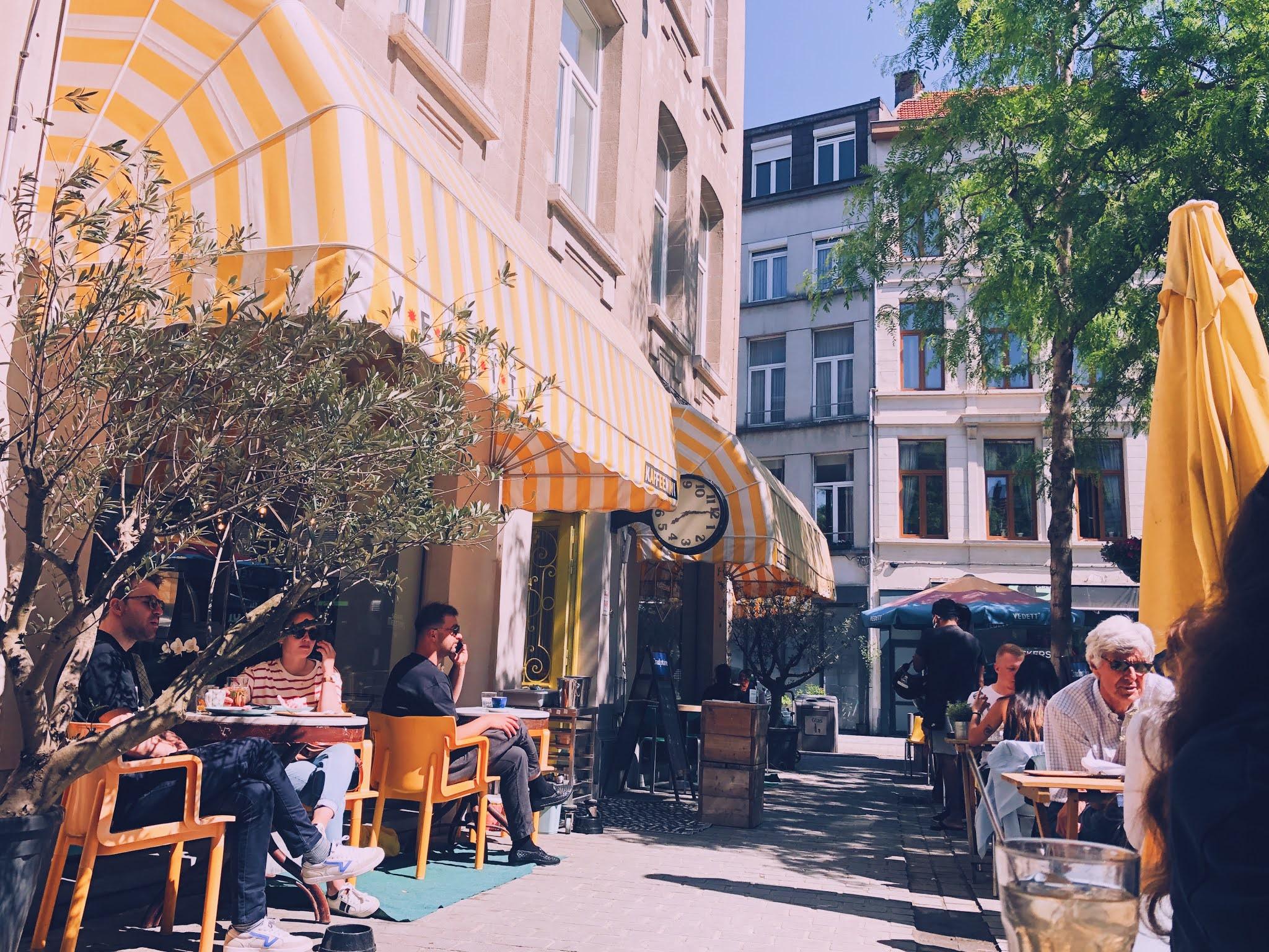 Terras van de Kaffeenini in Antwerpen