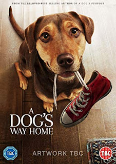 A Dogs Way Home (2019) Hindi Dual Audio Bluray 720p