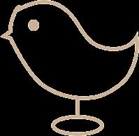 Oiseau Distrait