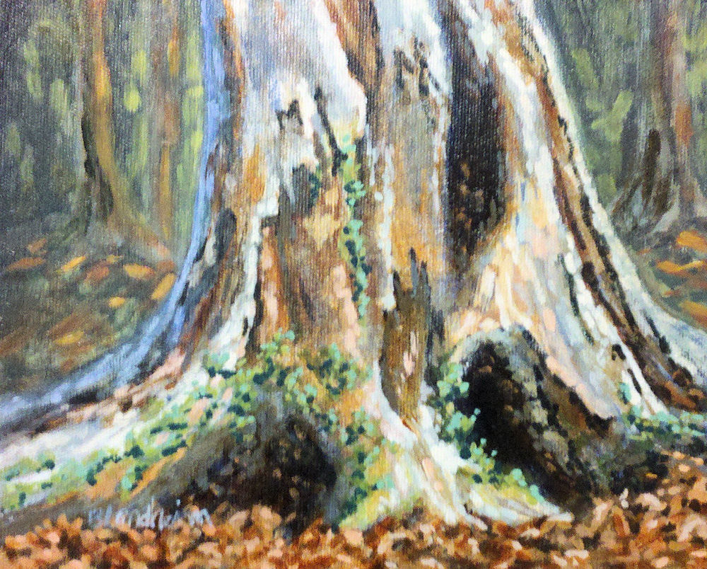 Fresh Tree Painter: Studying A Tree Trunk IT67