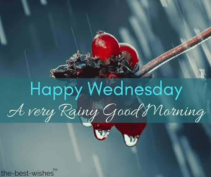 happy wednesday rainy good morning image