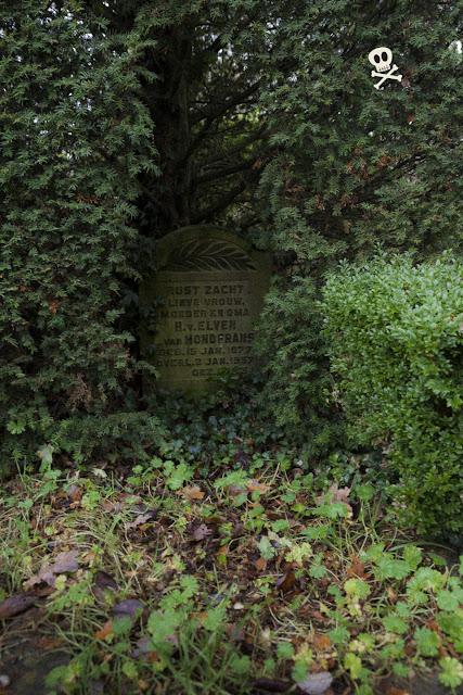Entre las ramas de un tejo se esconde la tumba de uno de los moradores de Huis te Vraag