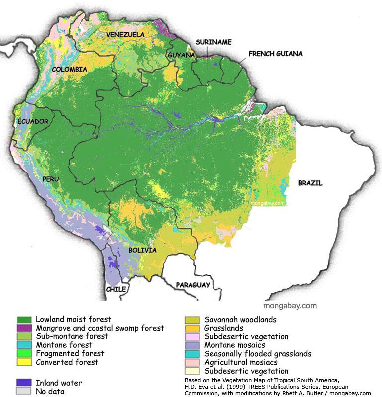 Gambar Peta Hutan Amazon
