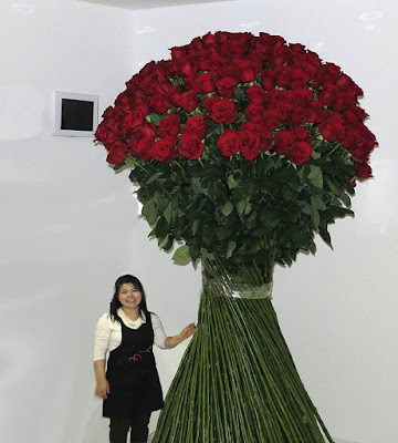 Banyak perempuan yang menginginkan pasangan yang ia cintai sangat romantis dan sangat menyaya Tips PDKT Merubah Pasangan Menjadi Romantis