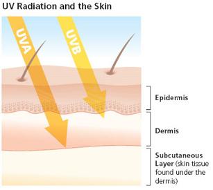 tips-memilih-sunscreen