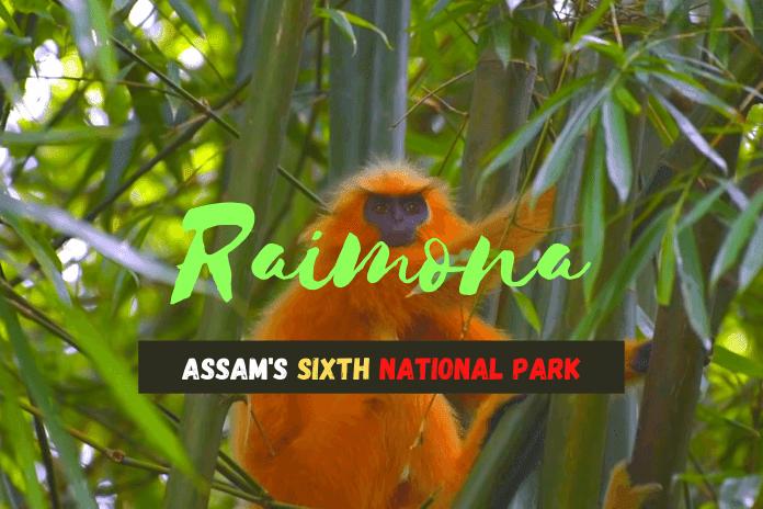 Raimona-The-Sixth-National-Park-of-Assam