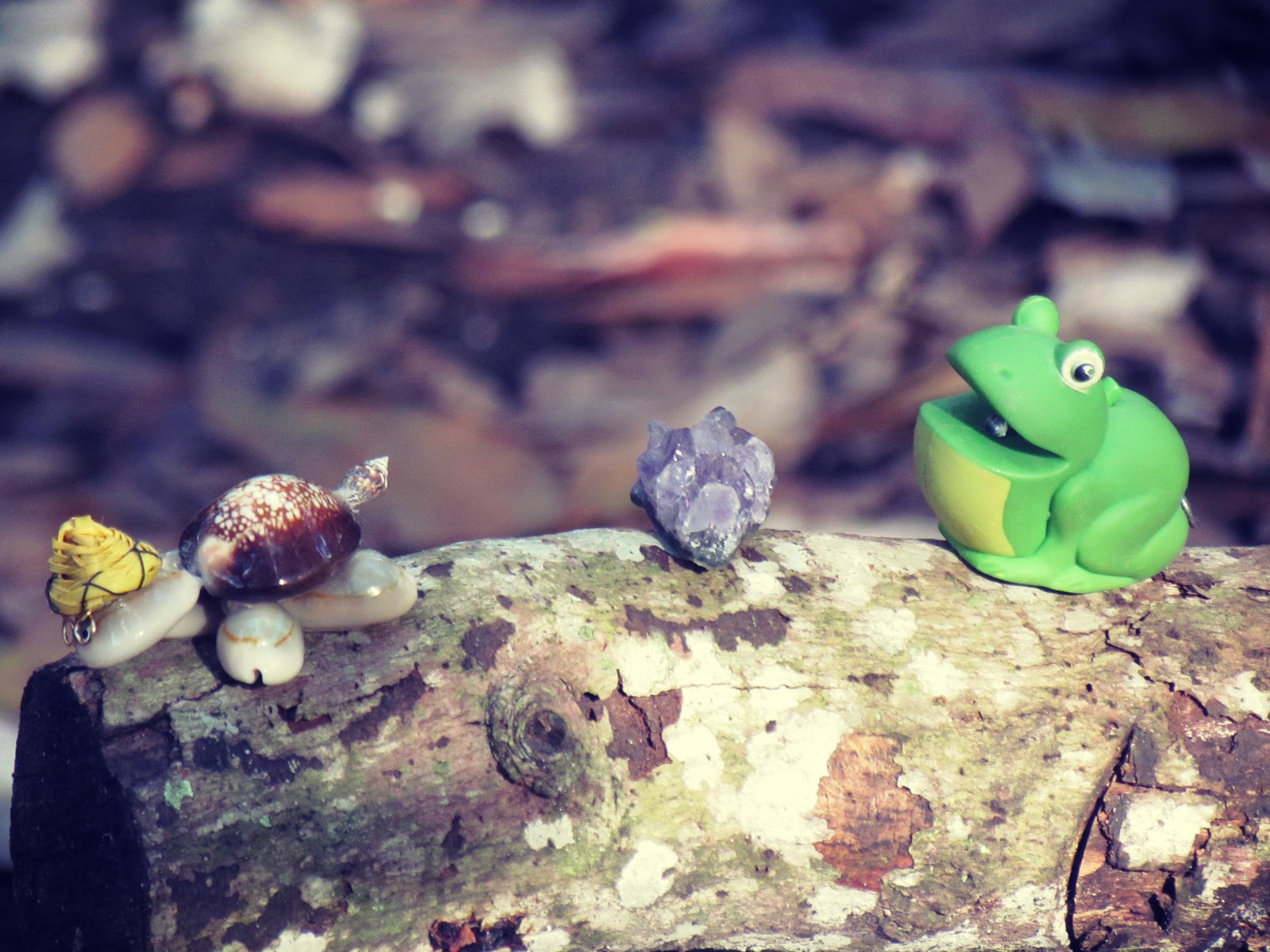 A turtle made out of sea shells, an amethyst healing stone, and green toy frog on a wooden log in mother nature