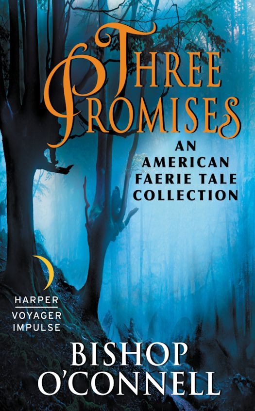 Guest Blog by Bishop O'Connell, author of Three Promises, The Stolen and The Forgotten