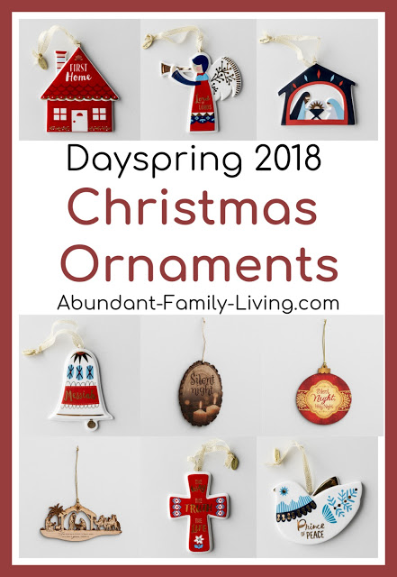 https://www.abundant-family-living.com/2018/11/dayspring-gift-guide-for-christmas-2018.html#.W9vBP-JRfIU
