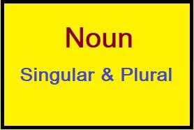 Singular and Plural Noun, Noun, Singular Noun Examples, Plural Noun Examples