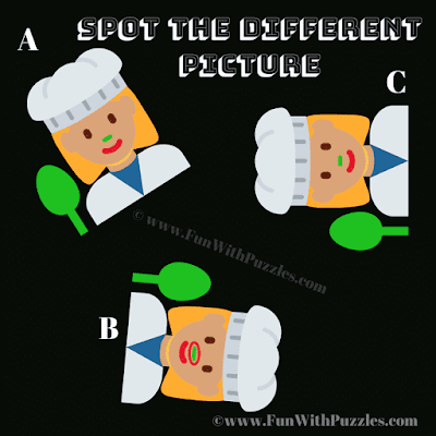 Odd One Out Picture Puzzle-Answer