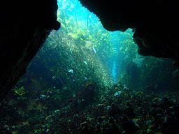 justins-caves-swimthrough