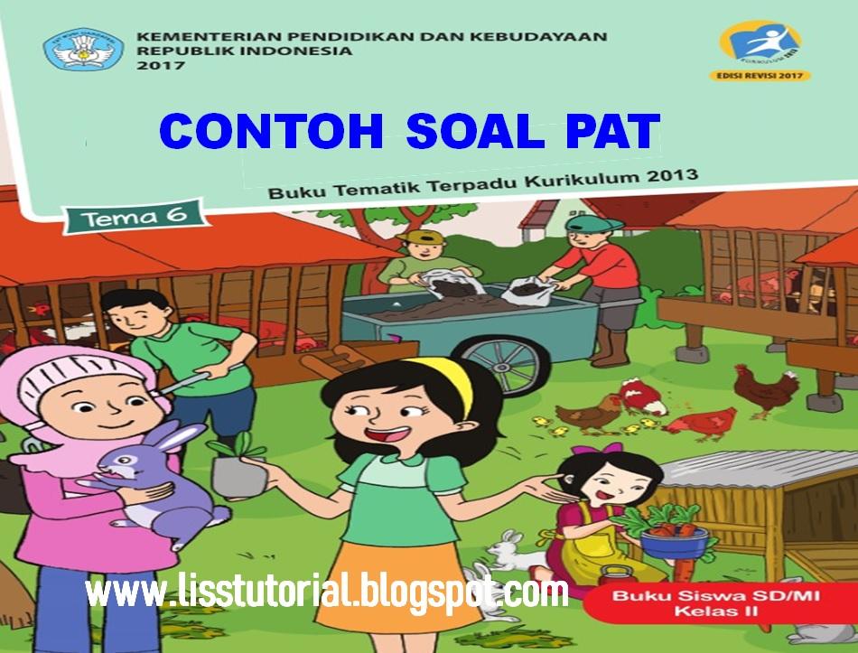 Contoh Soal UKK/PAT Tema 6