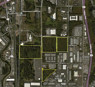 Picture of parcel map showing Renton properties set aside to create the Springfield Creek wetland mitigation and habitat bank.