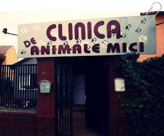 lista cabinete veterinare arad cu program non stop deschise duminica