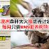 澳洲森林大火推行助养计划,每月只要RM9就能助养树熊!