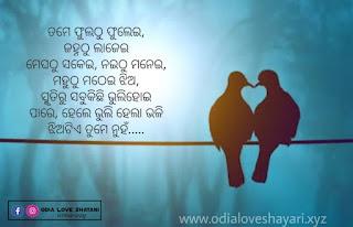 Odia Shayari - Odia Romantic SMS, Odia love Shayari SMS, Odia Romantic Shayari