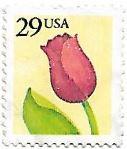 Tulipa com valor facial