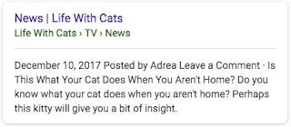 Google Search Gallery : Breadcrumb