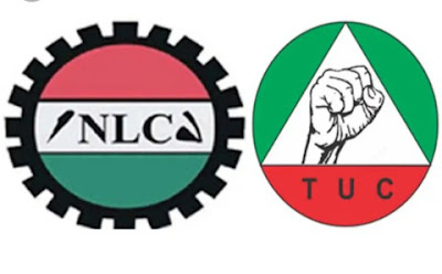 """Toothless Union"" – Nigerians Blast NLC, TUC For Suspending Strike"