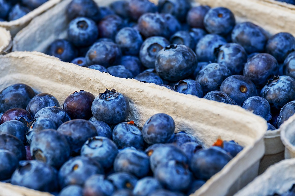 10 Foods That Help You to Concentrate Better and Their Benefits - Blueberries